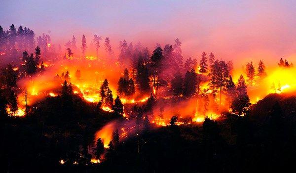اعزام تکاوران ارتش برای مهار آتش در جنگلهای توسکستان