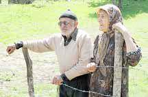 «فقر» در سالمندان دو برابر سنین دیگر است