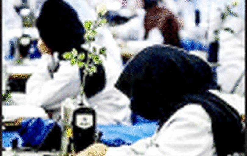 تخصیص ۳۰۰ میلیارد تومان برای بیمه «زنان سرپرست خانوار»