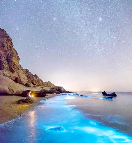 لارک؛ نگین درخشان خلیج فارس