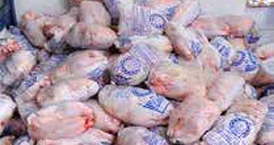 صادرات مرغ دوباره  ممنوع شد!
