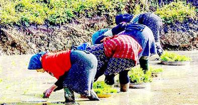 زنان؛ قربانیان مناسبات اقتصادی یا ناآشنایی با حقوق شهروندی