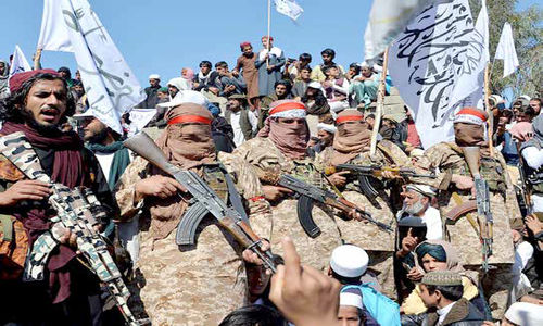 بذر وحشت طالبان به بار نشست